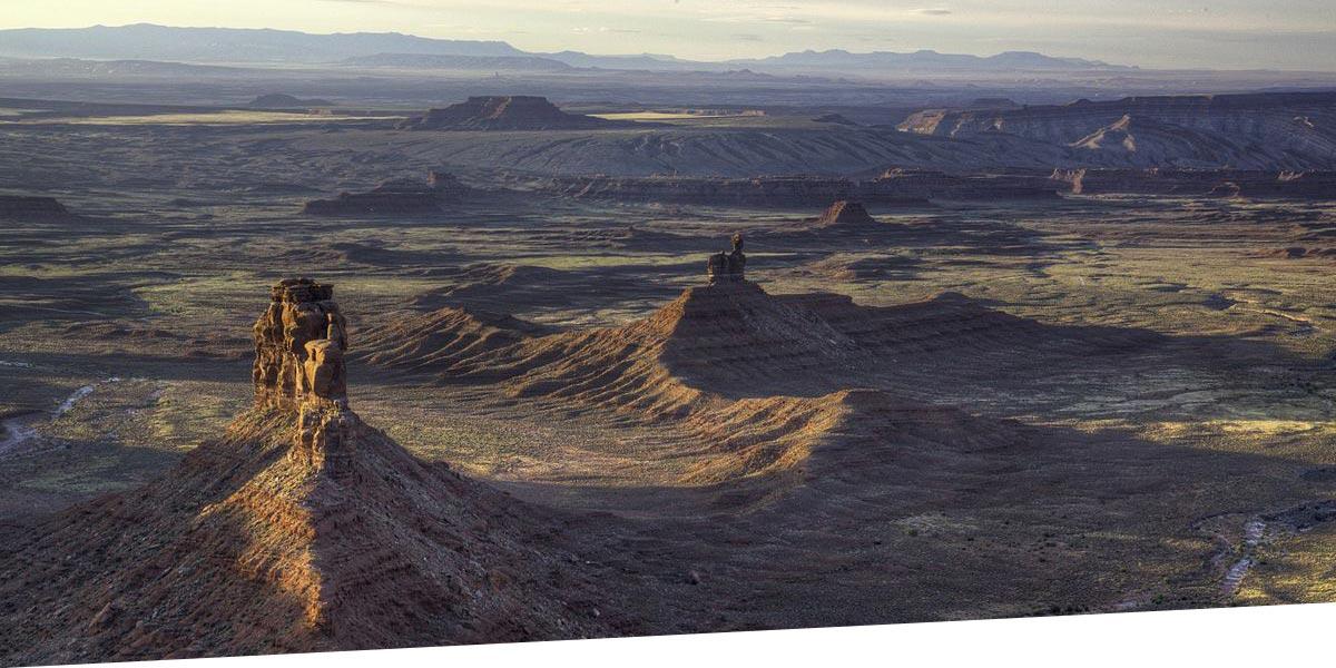 «Жертва маркетинга», или История одной футболки Patagonia