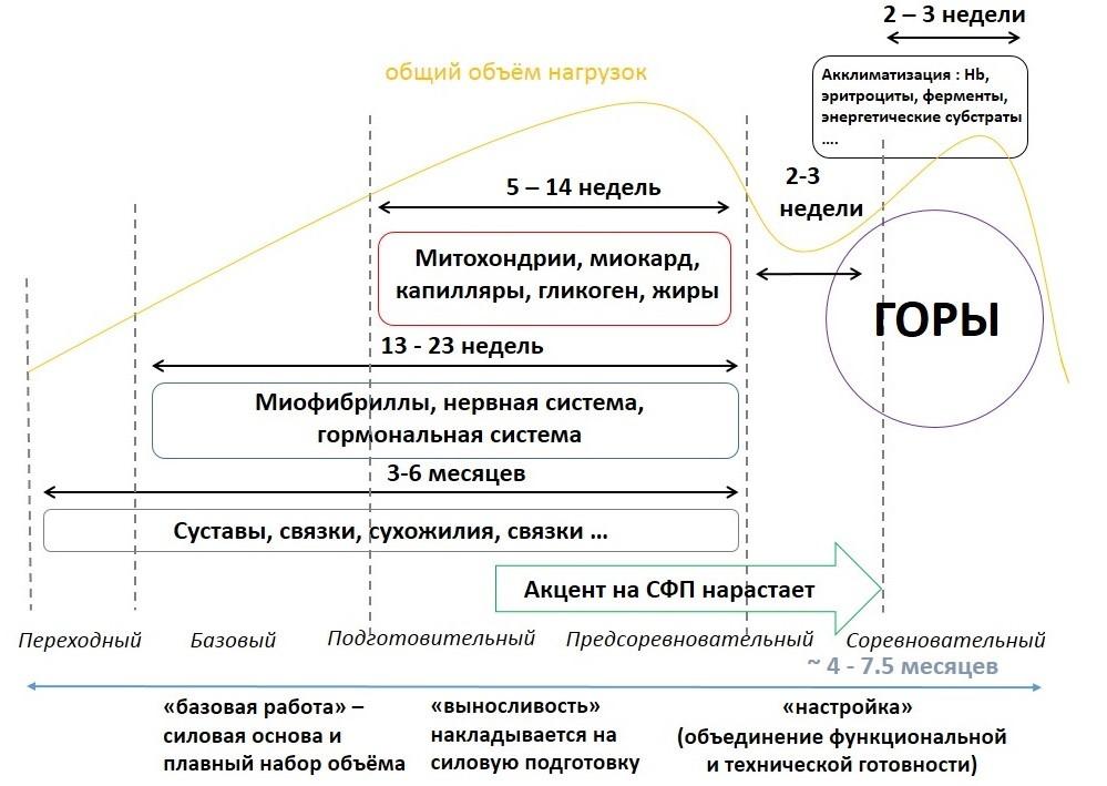 Но если попытаться в очень общих чертах обрисовать стратегию подготовки к главному восхождению, то можно рассмотреть такую схему