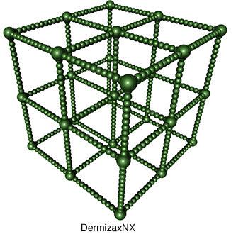 Структура мембраны Dermizax