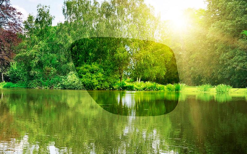 Green water (Зелёная вода)