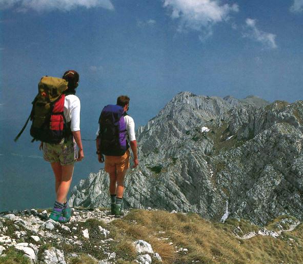 Lowe Alpine A.P.S. Регулируемая система спины рюкзака