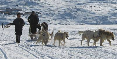 Отчёт о лыжном походе шестой категории сложности в Гренландии