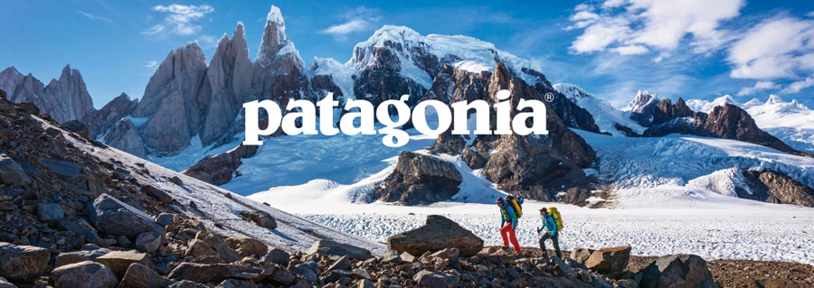 public company and patagonia We will write a custom essay sample on importance of mother nature specifically for you  public habit public company and patagonia intra-racial discrimination.