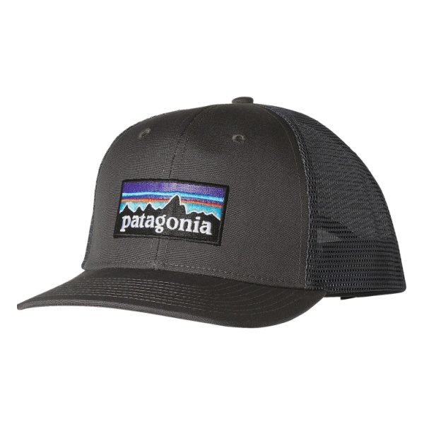 Купить Кепка Patagonia P6 Trucker Hat