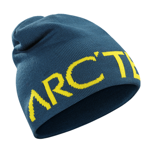 Шапка Arcteryx Word Head Long темно-синий ONE