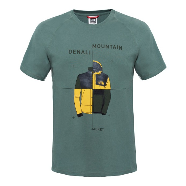 Футболка The North Face SS Mnt X Denal
