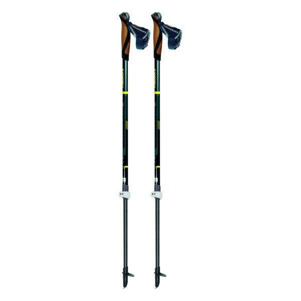 Телескопические палки для скандинавской ходьбы Masters Training Speed