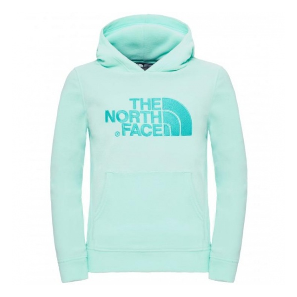 Куртка The North Face Y 100 Drew Peak Pullover Hoodie