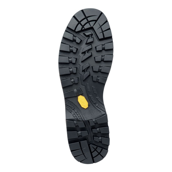 Купить Ботинки Zamberlan 2090 Mountain PRO EVO GTX RR