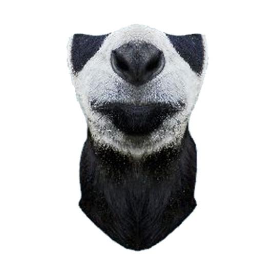 """Маска Funtomask ветрозащитная Funtomask """"Панда"""" черный ONE балаклава funtomask funtomask windblock черный one"""