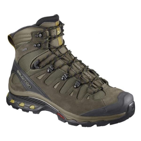 Ботинки Salomon Salomon Quest 4D 3 GTX ботинки salomon ботинки shoes x ultra 3 mid gtx bk india ink mo