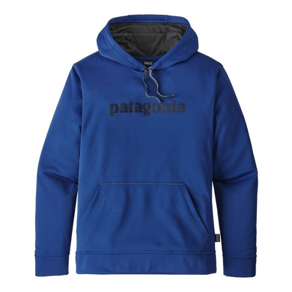 Толстовка Patagonia Patagonia Text Logo Polycycle Hoody цена