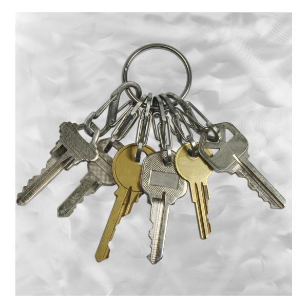 Купить Брелок для ключей Nite Ize Key Ring с металлическими карабинами