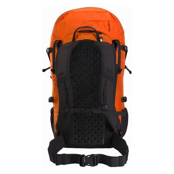 Купить Рюкзак Arcteryx Brize 32 Backpack