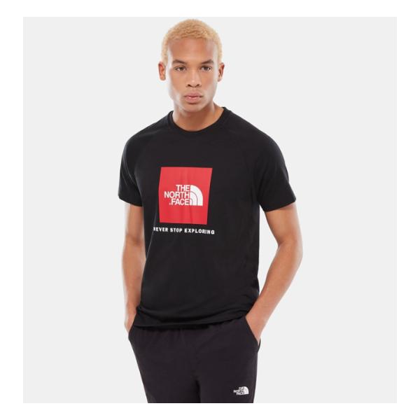 Купить Футболка The North Face Raglan Red Box
