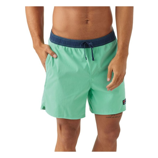 Купить Шорты Patagonia Stretch Wavefarer Volley Shorts - 16