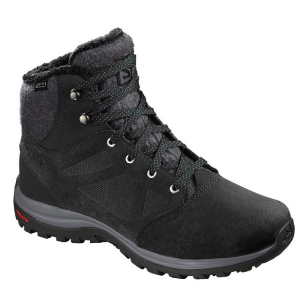 Купить Ботинки Salomon Ellipse Freeze CSWP женские
