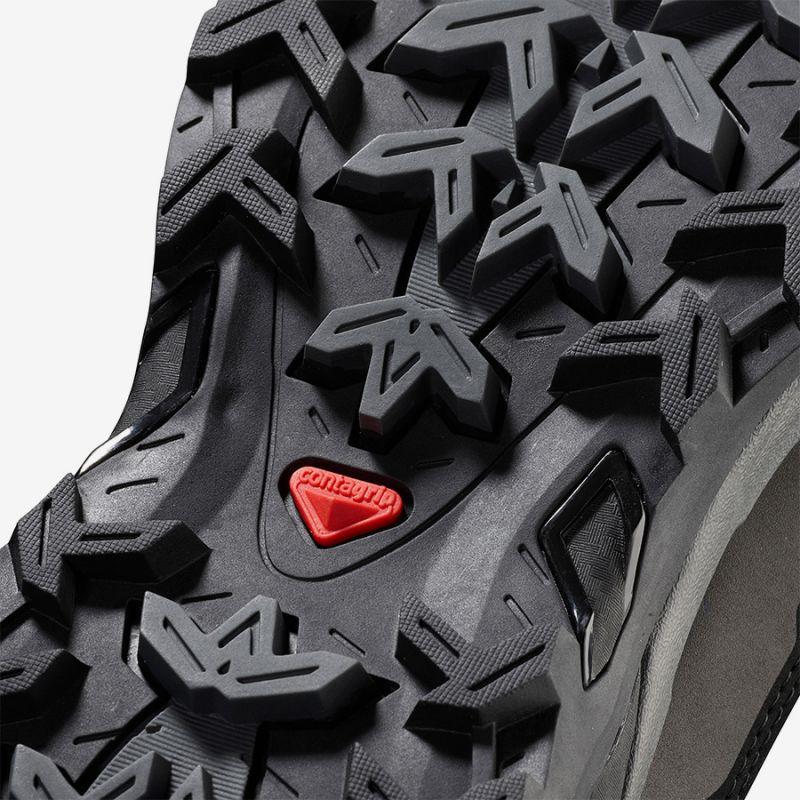 Купить Ботинки Salomon X Ultra Trek GTX